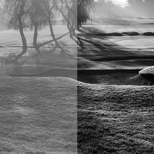 Improving Contrast: Levels In B/W Photography